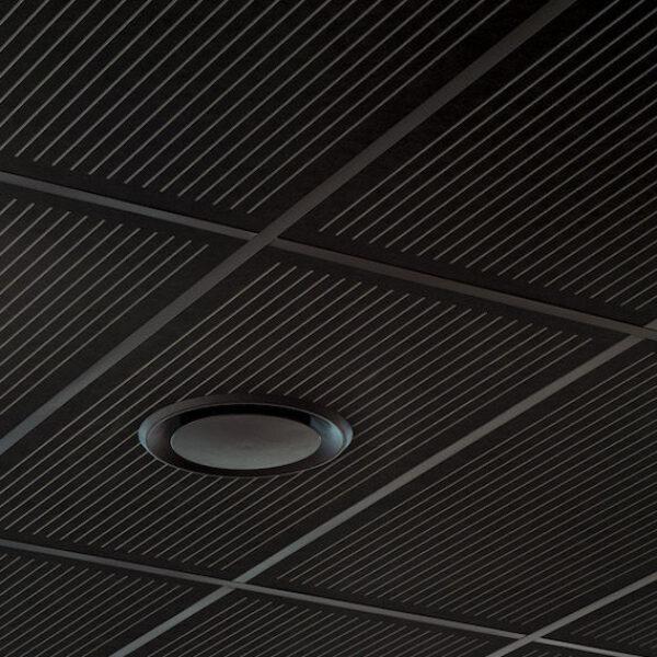 Triton 50 - Asona Acoustical Range